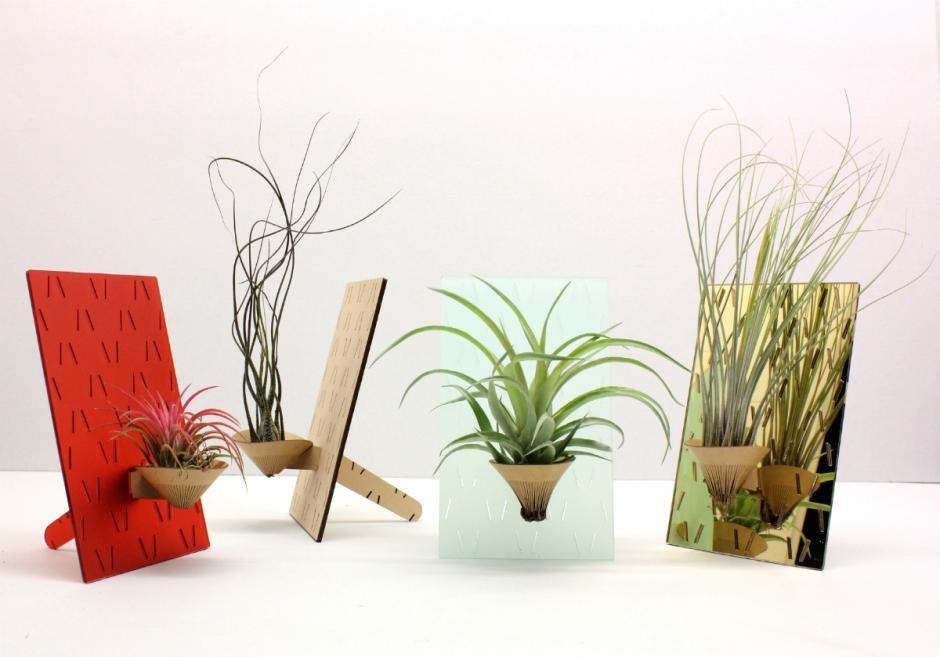 pflanzen ohne erde und wasser ostseesuche com. Black Bedroom Furniture Sets. Home Design Ideas